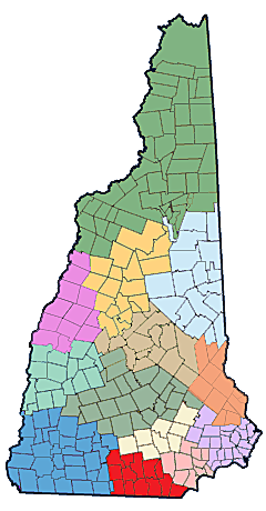NH Public Health Networks - Capital Area Regional Public Health Network