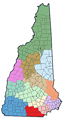 NH Public Health Networks - Central NH Regional Public Health Network